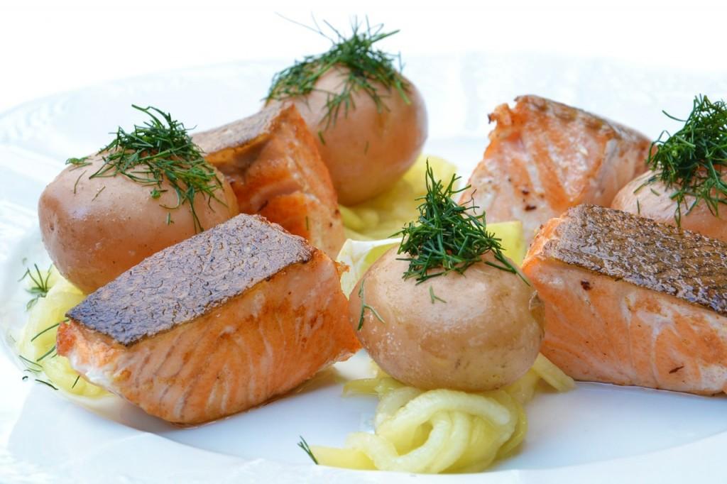 salmon-comida