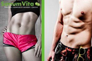 sinefrina sin grasa abdominal