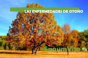 las enfermedades de otoño
